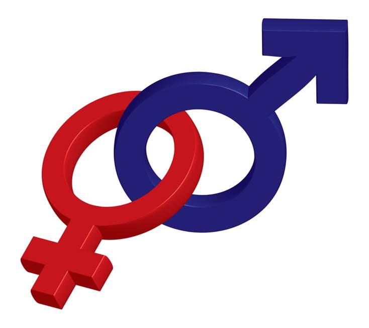 Das dritte Geschlecht (Fourier)